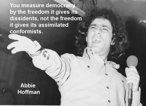 Hoffman Measure of Democracy