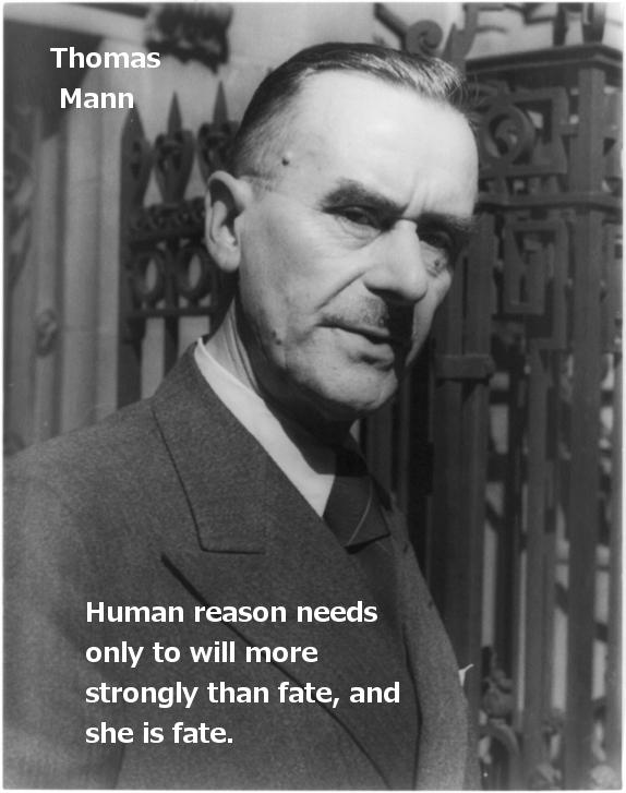 Thoman Mann Reason Quote