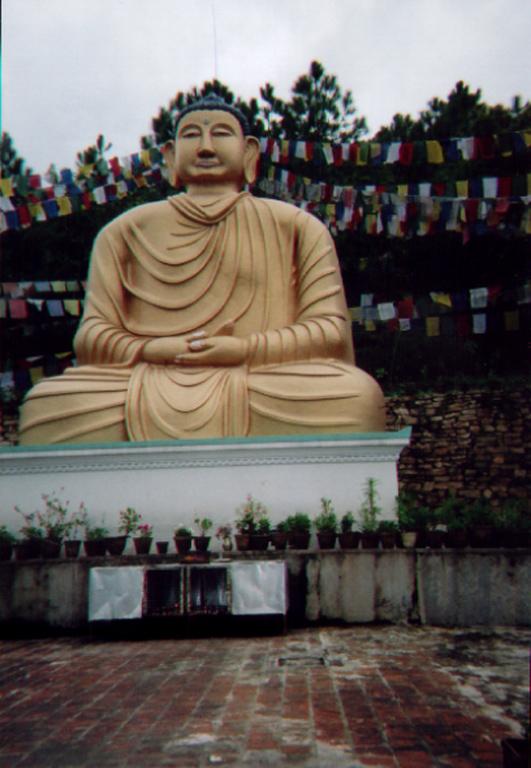 buddha-near-godivari-2