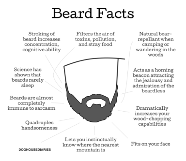 beard-facts-640x556
