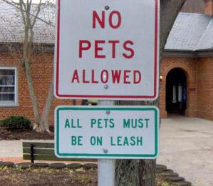 contradictionnopets
